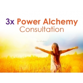 3x Power Alchemy Consultation 90mins
